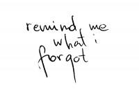 http://www.godoberta.com/files/gimgs/th-27_8_remind-me-what-i-forgot-ss.jpg